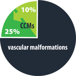 Cavernous Malformation - CCMs